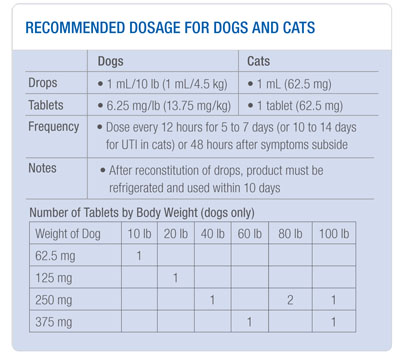 where to buy tramadol for dogs