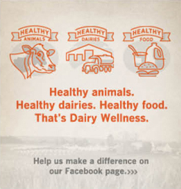 Healthy animals. Healthy dairies. Healthy food. That's Dairy Wellness.