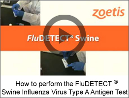 flu-detect video