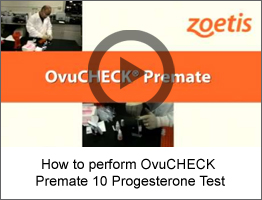 OVUCHECK PREMATE 10  right widget-video