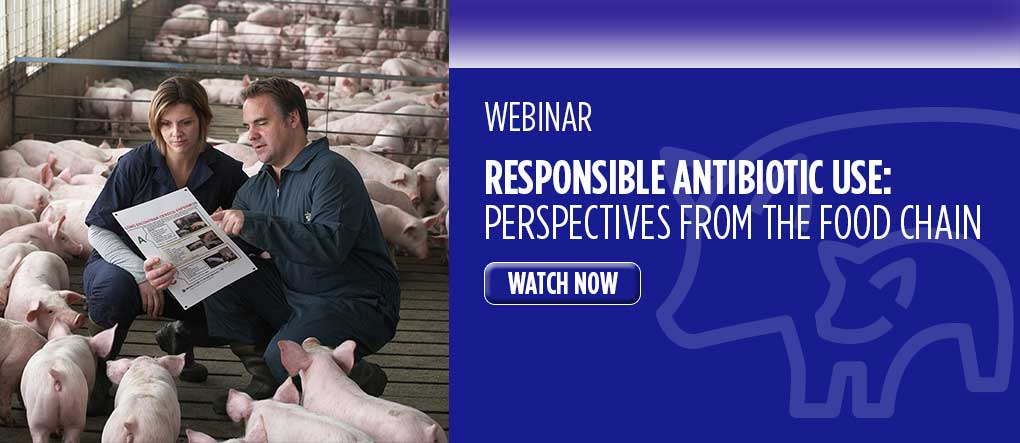 Responsible Antibiotic Use Webinar