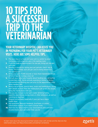 animal health infographic: 10 tips for a successful trip to the veterinarian