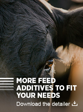 More feed additives to fit your needs