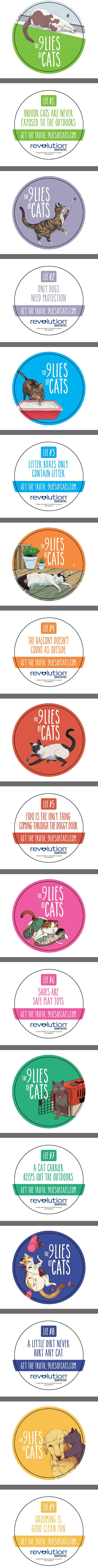 9 Lies of Cats coasters