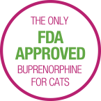 The only FDA approved buprenorphine for cats