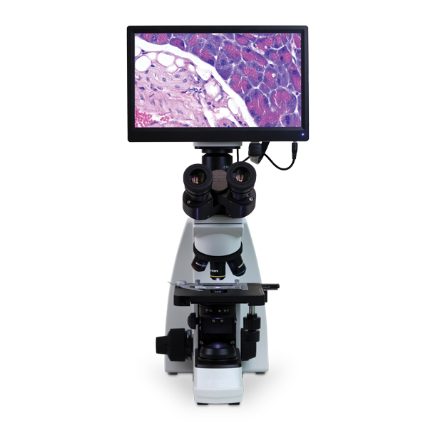 VETSCAN HDmicroscope Image