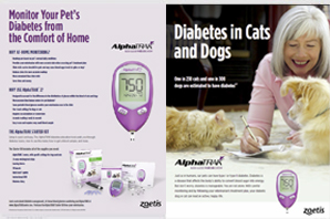 Diabetes in Cats and Dogs PDF for Pet owners