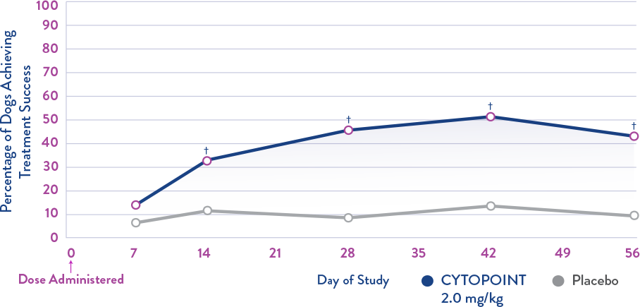 CYTOPOINT canine skin improvement