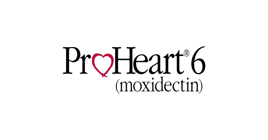Image result for proheart6 images