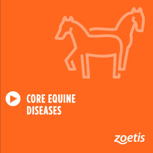 Core Equine Diseases