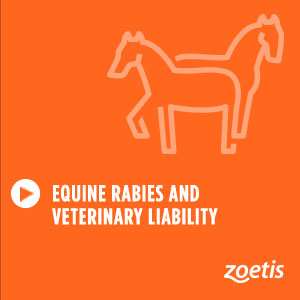 Equine Rabies and Veterinary Liability