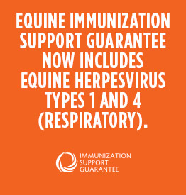 THE EQUINE IMMUNIZATION SUPPORT GUARANTEE