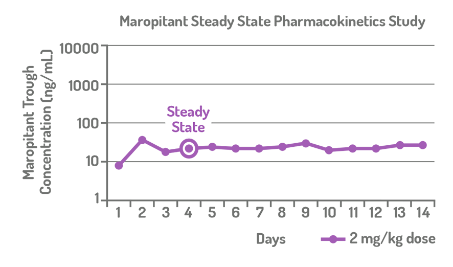 Graph shows steady-state levels of maropitant 2 mg/kg dosage reached by day 4 of pharmacokinetics study